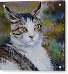 My Beautiful Cat Acrylic Print