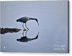 My Blue Reflection Acrylic Print by Diego Re