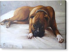 My Dog Mr Acrylic Print