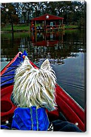 My Kayaker Buddie Acrylic Print by Carrie OBrien Sibley