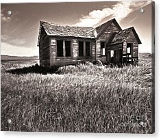 My Own Private Idaho Acrylic Print by Gregory Dyer