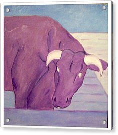 My Purple Cow Acrylic Print by Sue Prideaux
