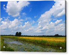My Wonderful Eastfrisia Acrylic Print by Steve K