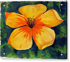 Acrylic Print featuring the painting Mysterious Yellow Flower by Debi Singer