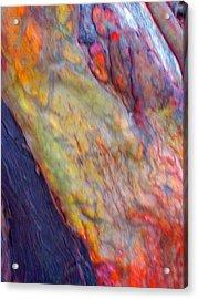 Acrylic Print featuring the digital art Mystics Of The Night by Richard Laeton