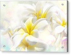 Na Lei Pua Melia Aloha E Ko Lele - Yellow Tropical Plumeria Maui Acrylic Print by Sharon Mau