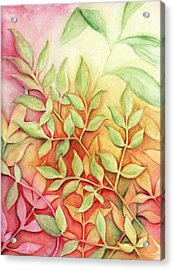 Acrylic Print featuring the painting Nandina Leaves by Carla Parris