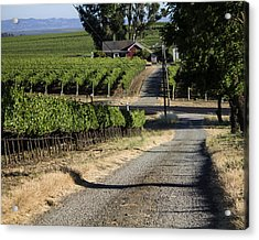 Napa Farmhouse Acrylic Print by Dee  Savage