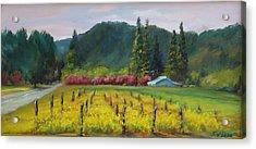 Napa Valley Mustards On Silverado Trail Acrylic Print by Deirdre Shibano