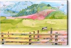 Napa Valley Acrylic Print by Robert Hooper