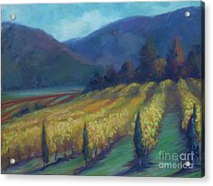 Napa Valley View From The Castle Acrylic Print by Deirdre Shibano