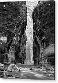 Narrows Of The Virgin River Acrylic Print by Nathan Mccreery