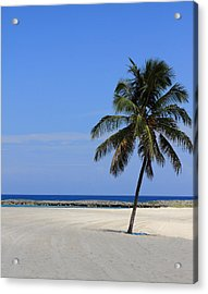 Acrylic Print featuring the photograph Nassau Palm by Coby Cooper