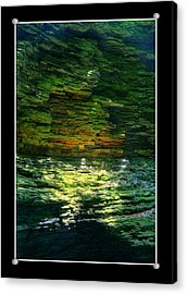 Natural Light Acrylic Print by Matthew Green
