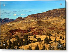Natural Paint Acrylic Print by Adam Jewell