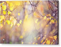Natural Watercolor Of Autumn Acrylic Print by Jenny Rainbow