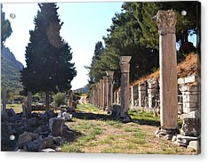 Natured Ruins  Acrylic Print by Courtney Dyer