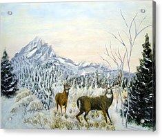 Nature's Creations Acrylic Print