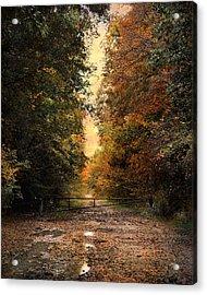 Nature's Secret Acrylic Print by Jai Johnson