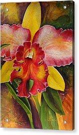 Natures Splendor Acrylic Print
