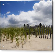 Acrylic Print featuring the photograph Nauset Dune by Michael Friedman