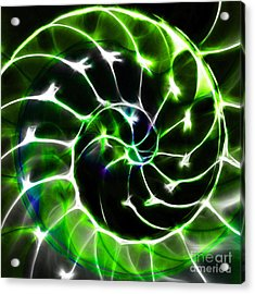 Nautilus Shell Ying And Yang - Electric - V1 - Green Acrylic Print by Wingsdomain Art and Photography