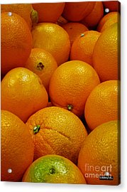 Navel Oranges Acrylic Print by Methune Hively