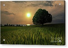 Near Paradise  Acrylic Print
