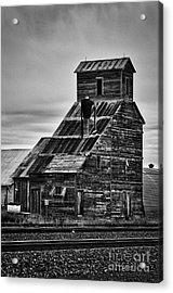 Nebraska Grain Elevator Acrylic Print by David Waldrop