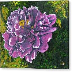 Nectar Acrylic Print