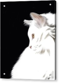Negative Space Kitty Acrylic Print by Stacy Parker