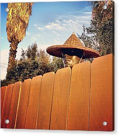 Neighborhood Creeper Acrylic Print