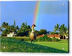 Acrylic Print featuring the photograph Nene At The End Of The Rainbow by Lynn Bauer