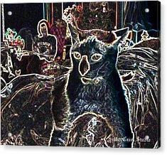 Neon Cat Acrylic Print by Sulfur Creek Studio