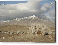 Nevada Scene Acrylic Print