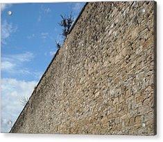 Never-ending Wall Of Dreams Acrylic Print
