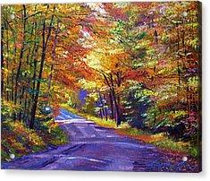 New England Roads Acrylic Print by David Lloyd Glover