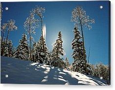 New Fallen Snow Acrylic Print