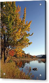 New Mills Meadow Pond Acrylic Print by Juergen Roth