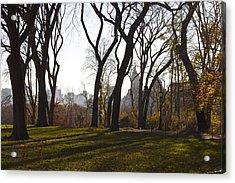 New York Trees Acrylic Print by Snow  White