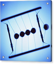 Newton's Cradle Acrylic Print by Kevin Curtis
