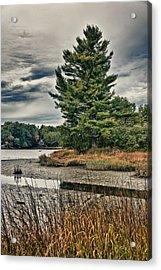 Nh Waterway 3 Acrylic Print by Edward Myers