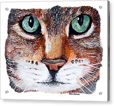 Acrylic Print featuring the painting Nice Kitty by Terry Banderas