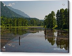 Acrylic Print featuring the photograph Nicomen Slough 2 by Rod Wiens
