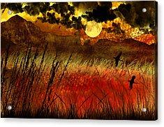 Night Falls Over The Land Acrylic Print by Ellen Heaverlo