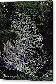 Acrylic Print featuring the photograph Night Lines by EricaMaxine  Price