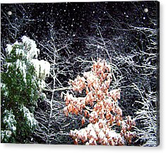 Night Snow 2 Acrylic Print by Sandi OReilly