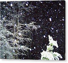Night Snow Acrylic Print by Sandi OReilly