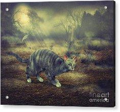 Night Walk Acrylic Print by Jutta Maria Pusl