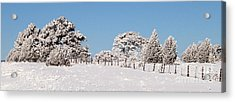 Acrylic Print featuring the photograph Nine Below by Bob and Nancy Kendrick